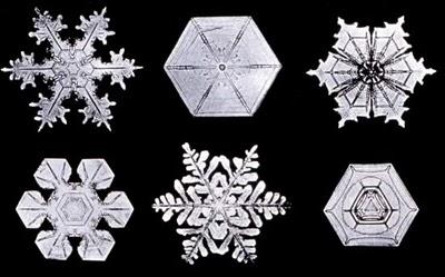 [es0506_p1_snowflakes_b.jpg]